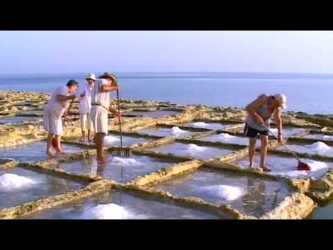Salt Harvesting Gozo